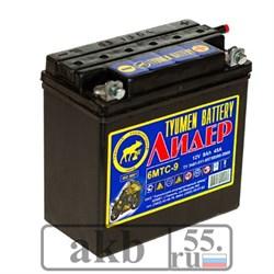 Аккумулятор 6 мтс 9 Лидер болт. - фото 4620